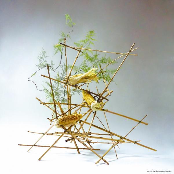 Aymuray. La cosecha, nueva exposición en el Centro Cultural Anabel Segura