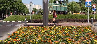Alcobendas llena de flores las calles de la ciudad
