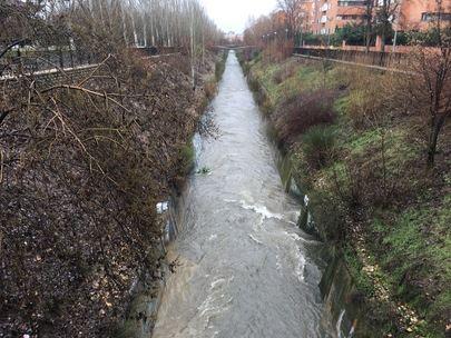 El Arroyo de la Vega se convierte en un ocasional rio