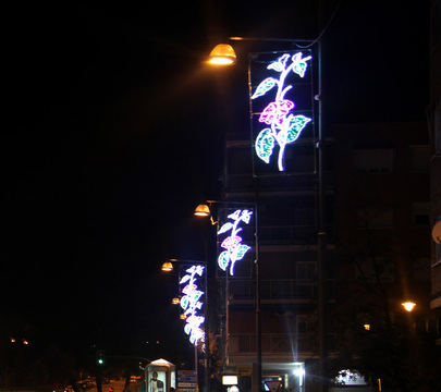 Las luces de Navidad se encienden el día 3 de diciembre