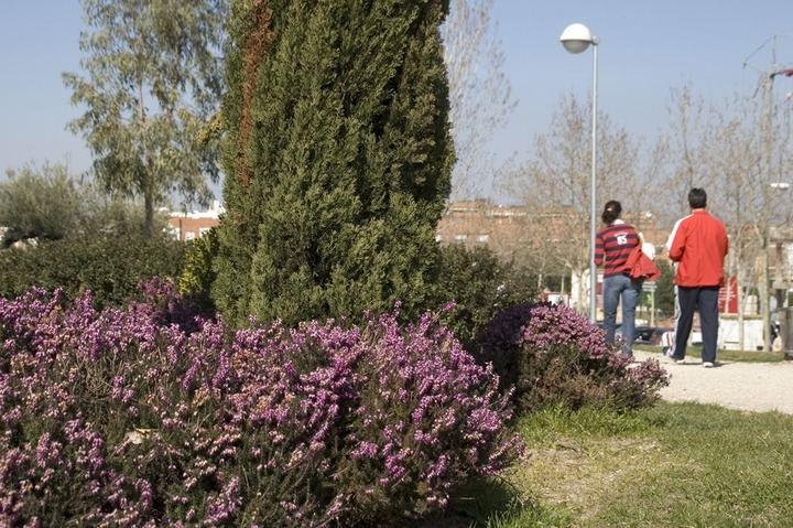 El Presupuesto 2020 de Sanse incluye un nuevo contrato para las zonas verdes