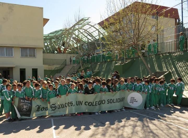 Más de 3.000 niños de los cinco colegios Los Sauces corren contra la Leucemia Infantil
