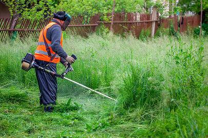 El Ayuntamiento termina los trabajos de desbroce y limpieza en una parcela municipal de La Moraleja