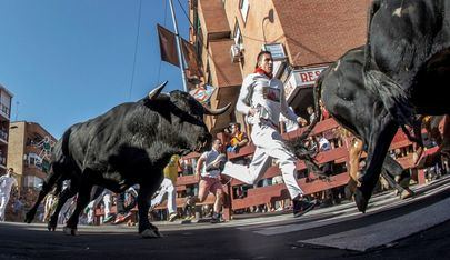 Habrá siete encierros, incluyendo uno nocturno, si el gobierno de la Comunidad de Madrid lo aprueba.