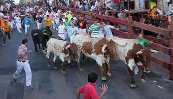 Encierros en San Sebastián de los Reyes (2º día)