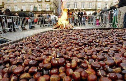 La Xuntanza de gallegos celebra la fiesta del Magosto en La Esfera de Alcobendas