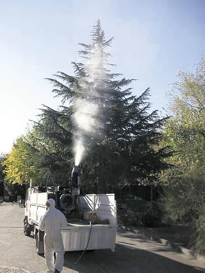 Campaña de Fumigación en el Soto