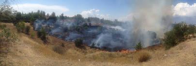 Las llamas calcinan una parcela colindante a Cuestablanca