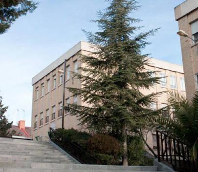 ¿Qué novedades presenta el centro educativo 'Irlandesas El Soto' de La Moraleja para el curso que viene?