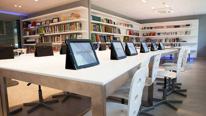 Google reconoce al colegio Liceo Europeo