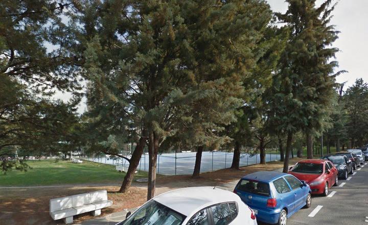Imagen de los coches que estacionan en el calle Azalea del Soto