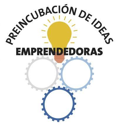 El programa de preincubación de ideas emprendedoras, On-line