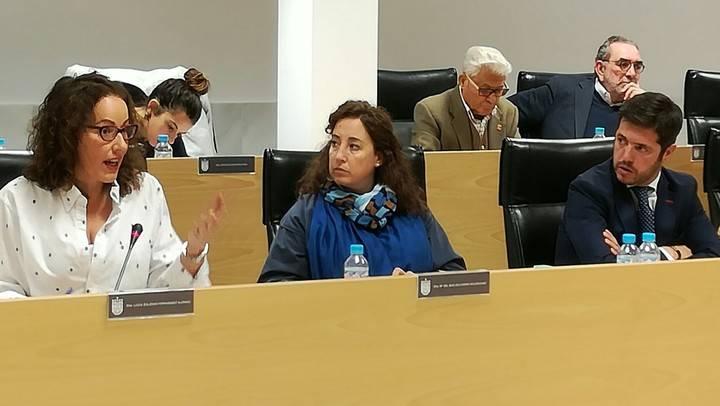 Imagen de la portavoz del PP de Sanse, Lucía Fernández, en las sesión plenaria de las Ordenanzas Fiscales