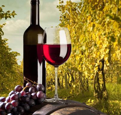 Conoce la Ruta del vino de Yecla