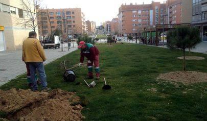 El Ayuntamiento de Alcobendas reparte especies de árboles y arbustos para las zonas verdes